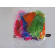 Fishing Feathers - Assorted
